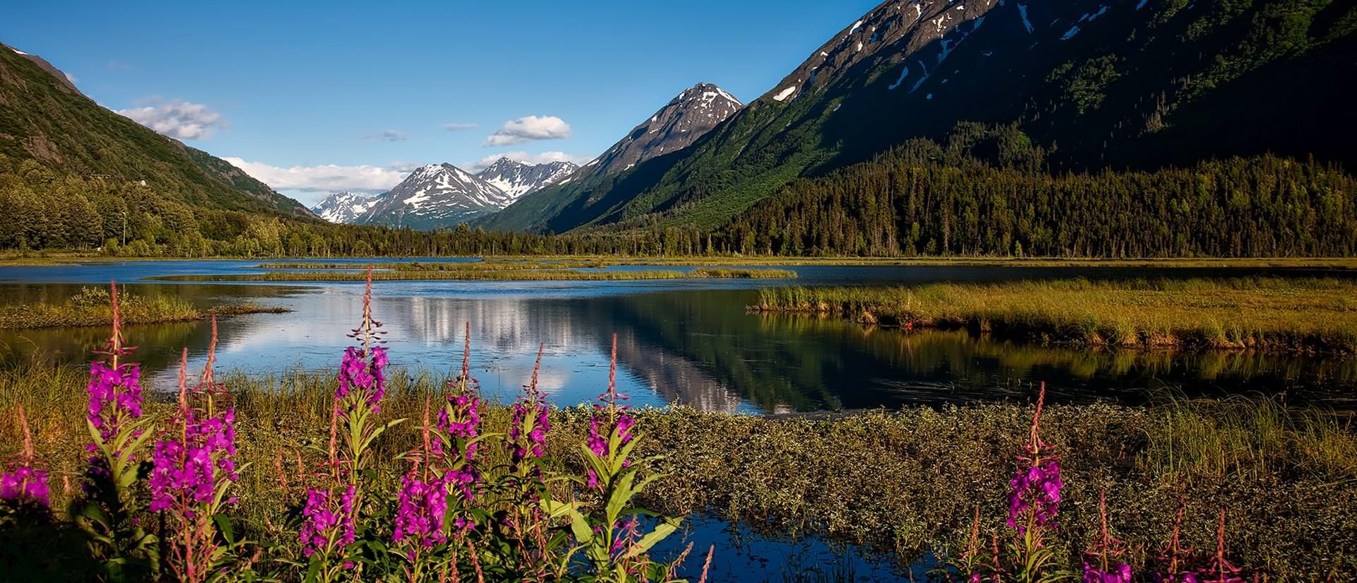 מידע שימושי למטייל באלסקה