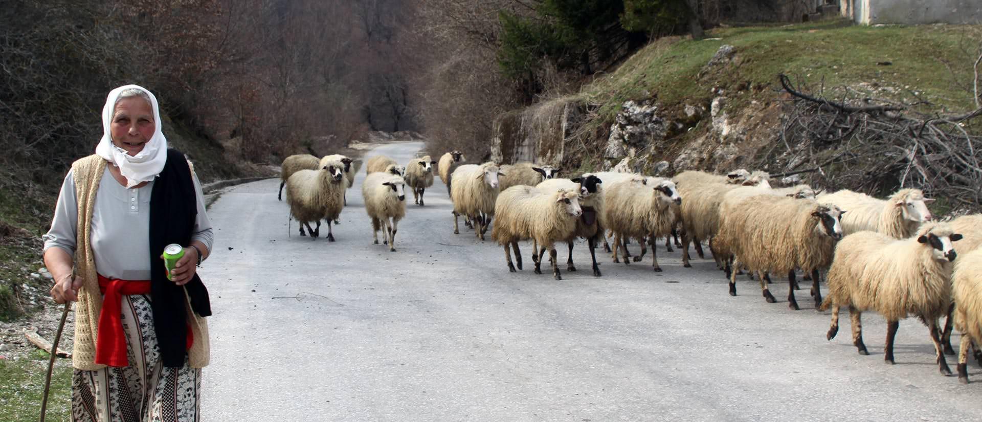 מונטנגרו, חבל הבלקן - טיולים מאורגנים לחבל הבלקן