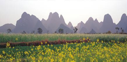 מתי הכי כדאי לטייל בסין - טיול מאורגן לסין
