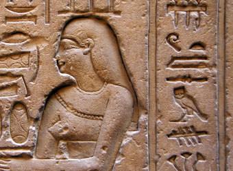 טיולים מאורגנים למצרים