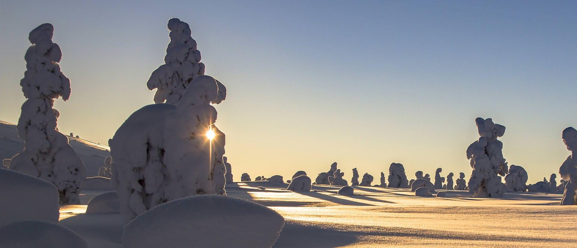 יעדים קרובים לטיול בעונה הקרה