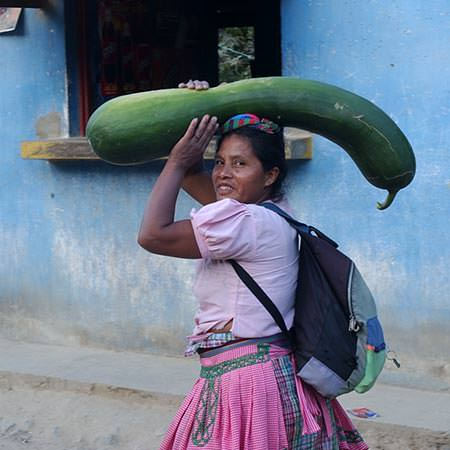 טיול למקסיקו וגואטמלה - 15 יום - מתרבות המאיה אל התרבות האצטקית