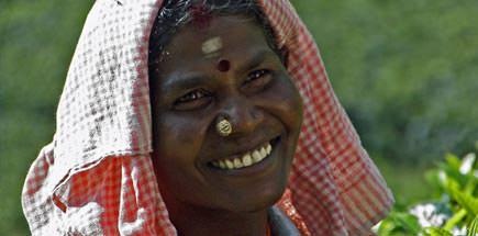 טיול מאורגן לדרום הודו: נופי טבע לצד נוף אנושי מרתק