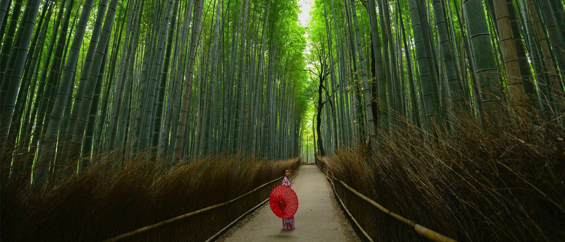 טיול ליפן - 16 יום - כולל ביקור באי נאושימה