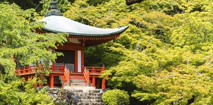 הפתעה יפנית ושמה קיוטו - טיול מאורגן ליפן