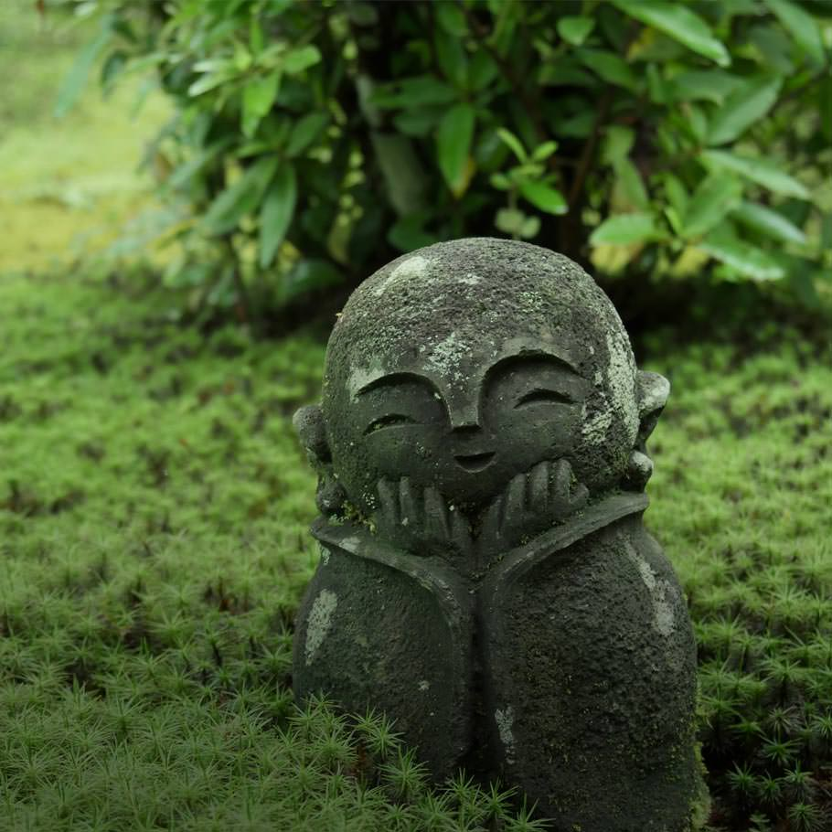 טיול מאורגן ליפן בפריחת הדובדבן