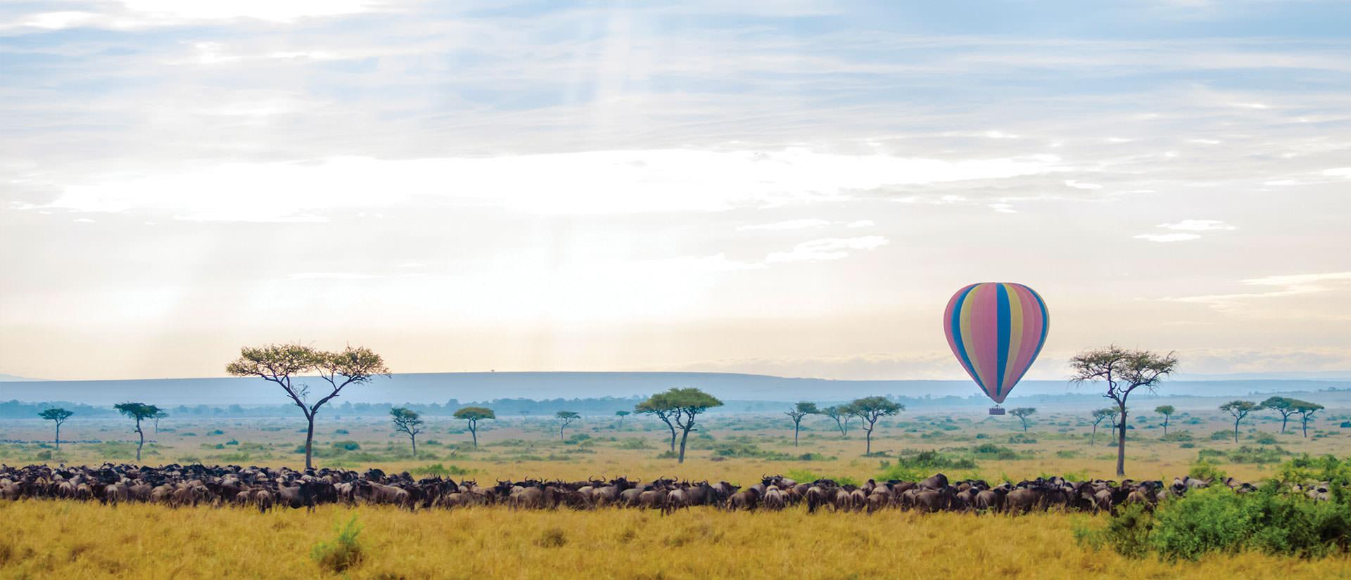 טיולים מאורגנים לקניה