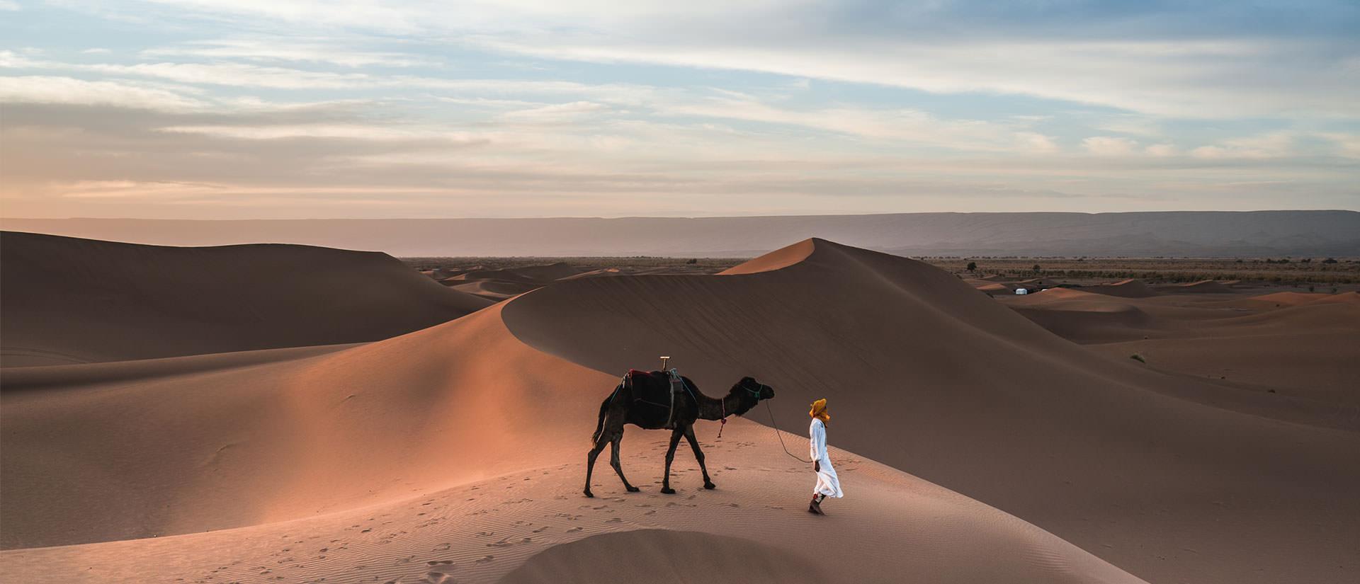טיול למרוקו - 10 ימים - מהרי האטלס למדבר סהרה