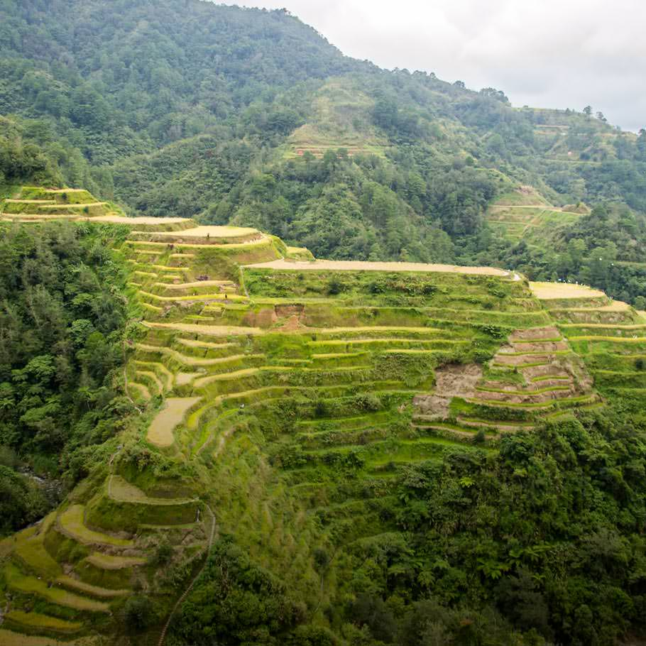 טיול לפיליפינים - 13 יום - עולם קסום ומרתק