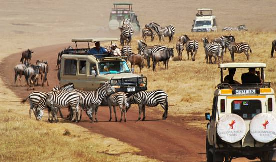ספארי באפריקה עם החברה הגיאוגרפית