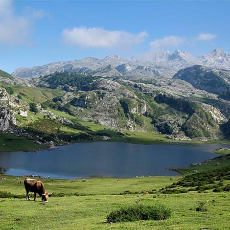 טיול בין ספרד לצרפת - 12 יום - מקיף מחבל גליסיה לפירנאים ועד בירת קטלוניה