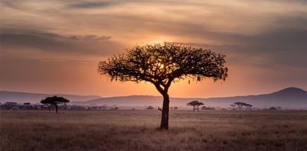 אתרים נבחרים בטנזניה