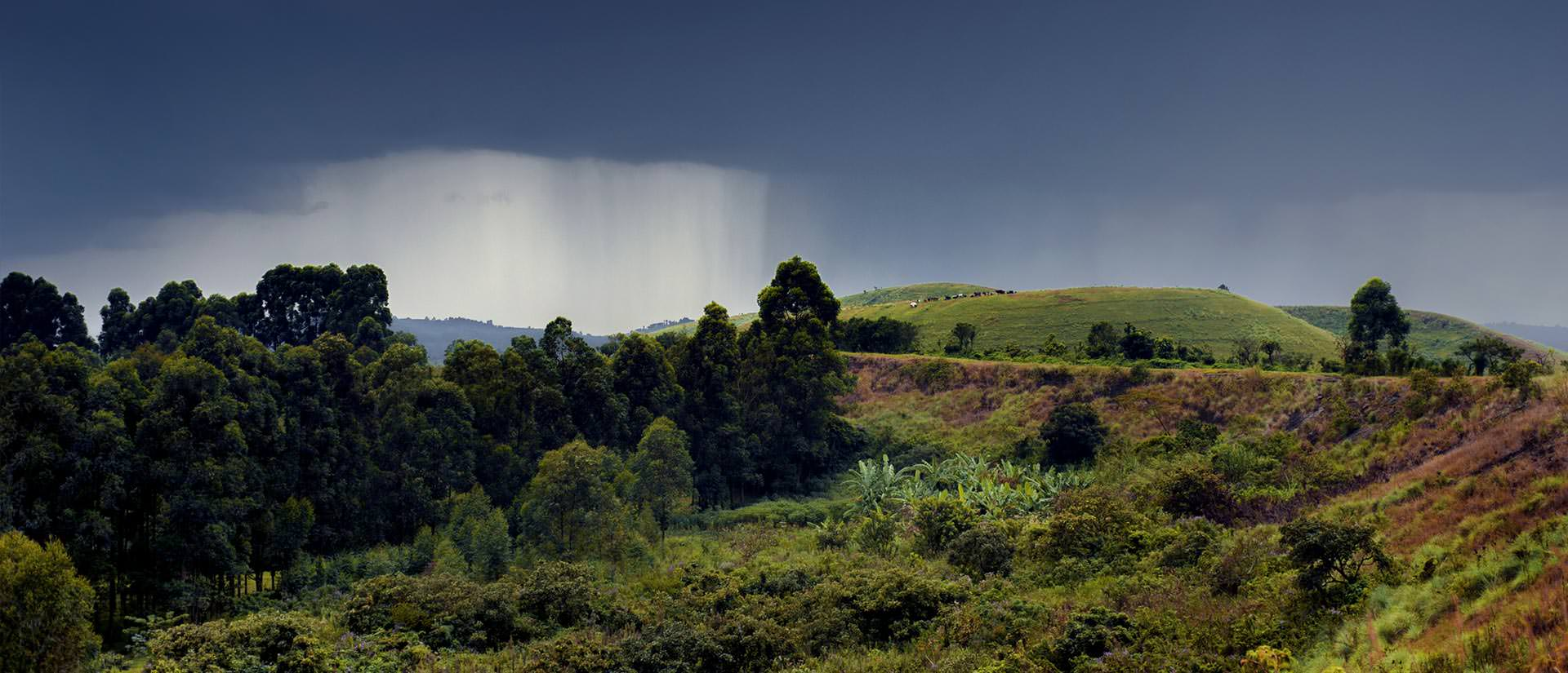 אוגנדה - הפנינה הירוקה של היבשת השחורה