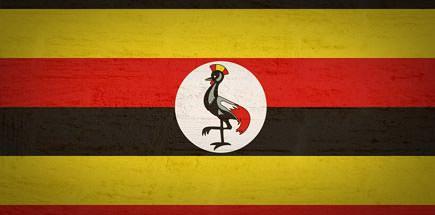 מידע שימושי למטייל באוגנדה