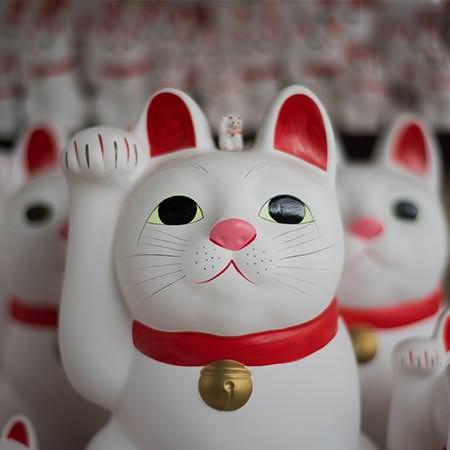 טיול נשים ליפן - 15 יום - סושי, סאקה ושעשועים