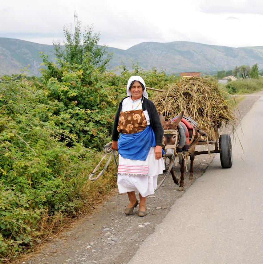 מקדוניה ואלבניה