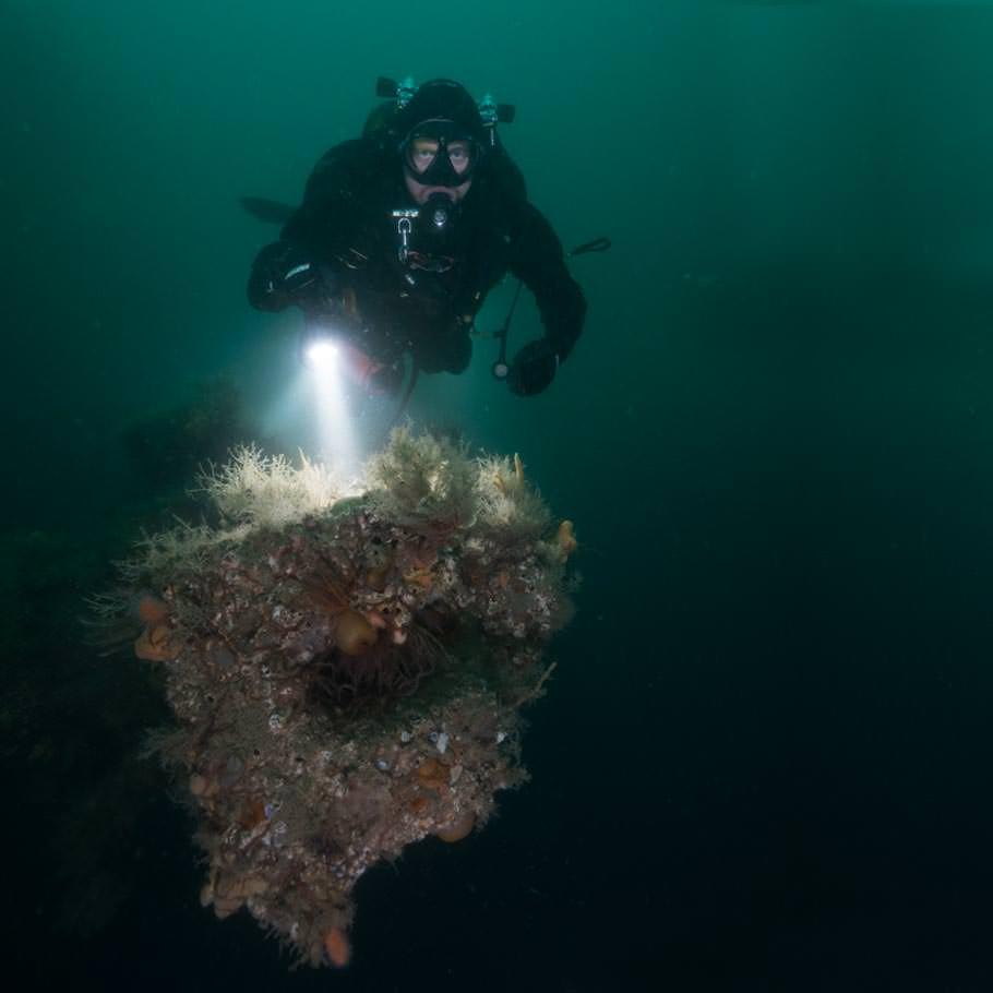 ספארי צלילה בסקוטלנד - 9 ימים - צלילה אל נבכי ההיסטוריה באיי אורקני
