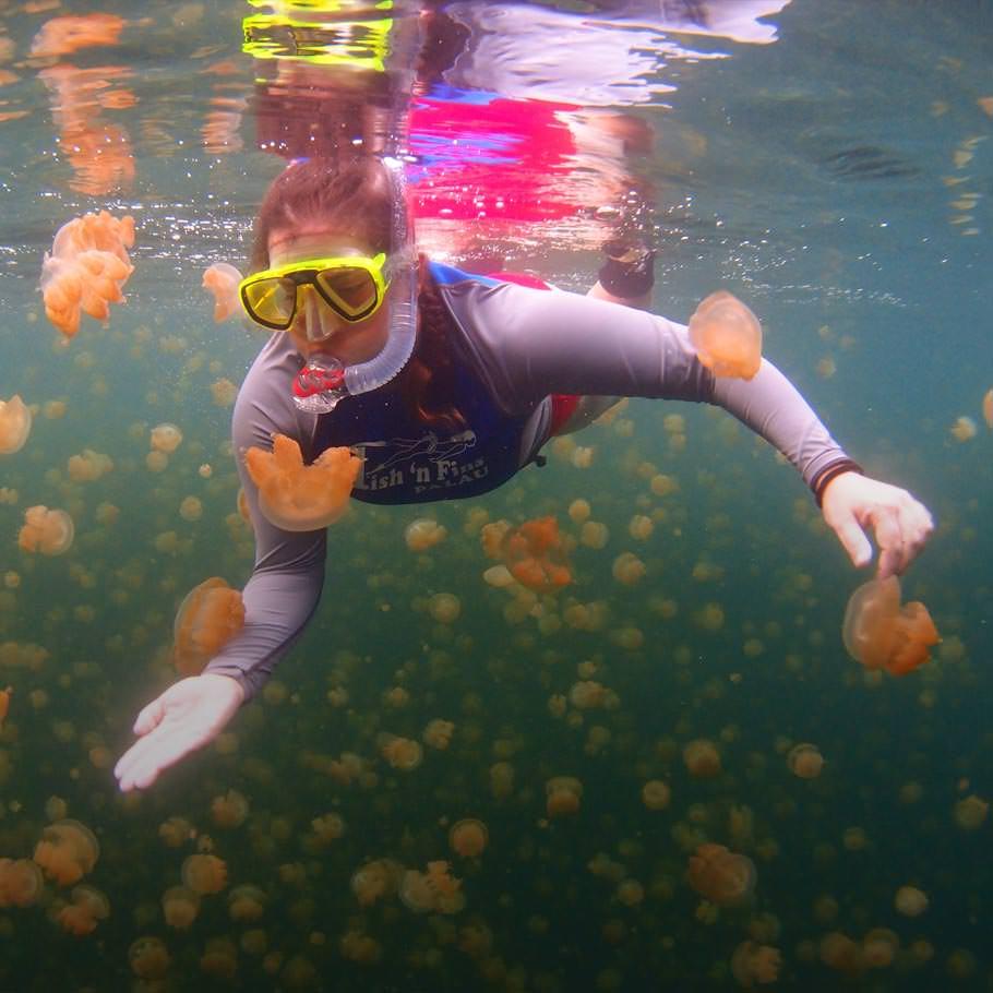 ספארי צלילה בפלאו – 15 יום – פלאי פלאו