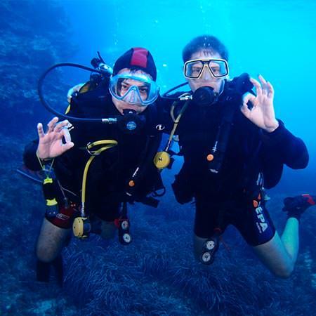 ספארי צלילה בפמבה - 10 ימים - צלילה באי הפראי