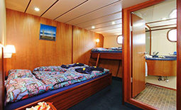 Sea Bird - חדר עם מיטה זוגית + מיטת יחיד | Sea Bird