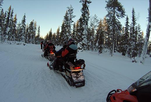 מסע באופנועי שלג, לפלנד | צילום: מוטי סבאג