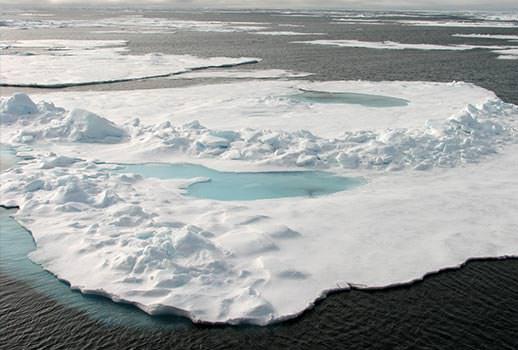 נופי קרחונים בשפיצברגן | צילום: פרופ' משה אגמי