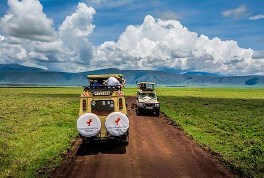 ספארי בטנזניה | צילום: אסף עמרן