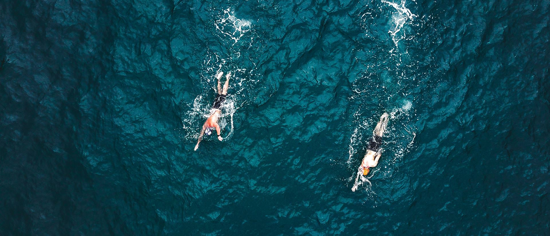 ספארי שחיה וצלילה בסיני - 4 ימים - בליווי מאמנת שחיה ומדריכי צלילה