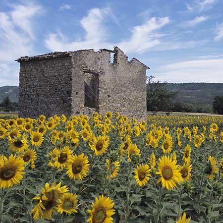 טיול לצרפת - 8 ימים - האלפים הצרפתים ופרובנס הגבוהה